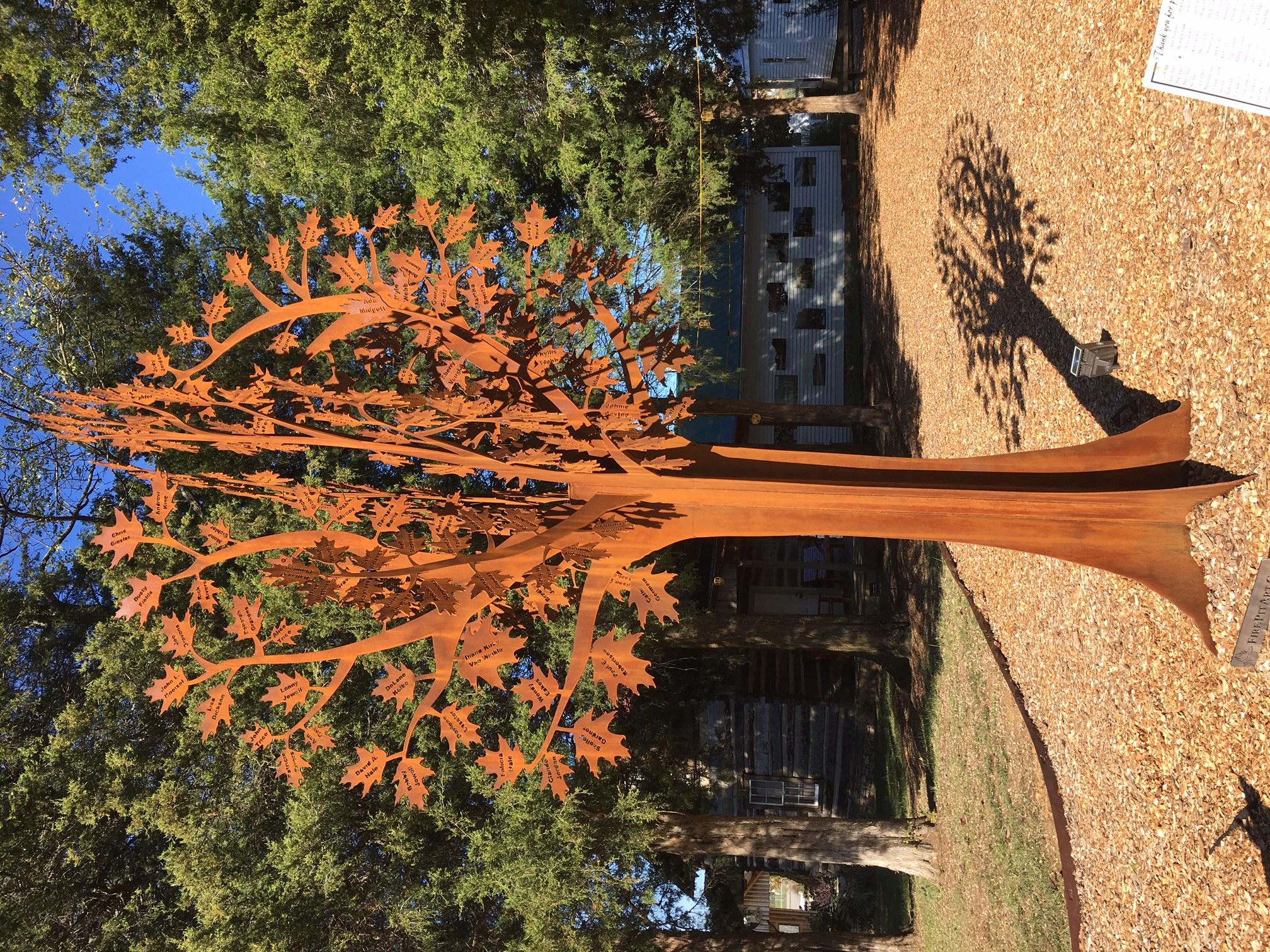 volunteer-tree1.jpg
